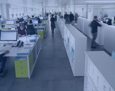 bracchi offices